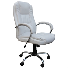 OPENBOX Homegear PU Leather Executive Office Chair