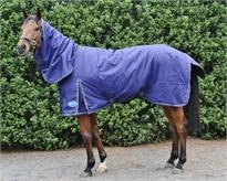Horse Blanket / Rug